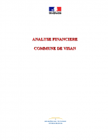 ANALYSE FINANCIERE VISAN 2013